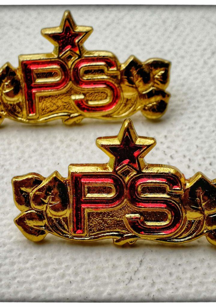 Rozlišovací odznaky PS (důstojník)